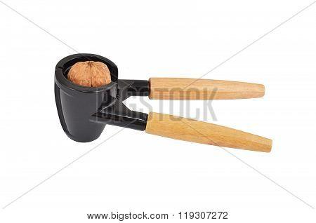 Nutcracker And Nut