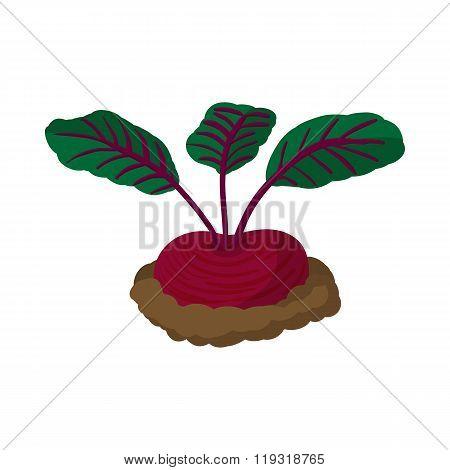 Red radishes cartoon icon