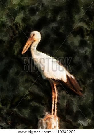 Painting of a perched openbill stork from south-east Asia against a green background