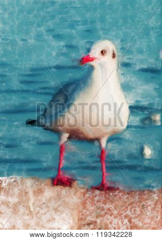Painting of a brown-headed gull from Thailand perched on a wall