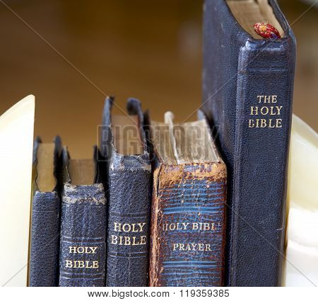 Bibles and Prayer Books