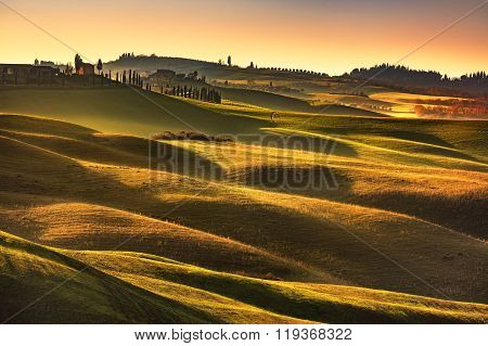 Tuscany Spring, Rolling Hills On Sunset. Rural Landscape. Green Fields. Italy