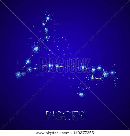 Zodiac Constellation Pisces