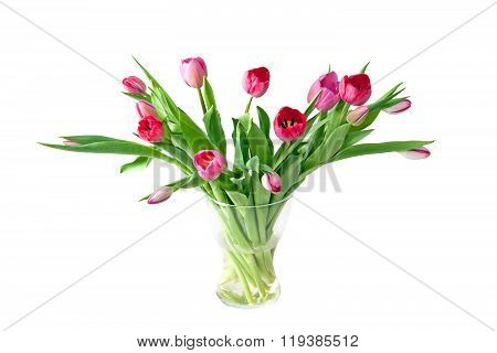 Pink Tulips In The Vase