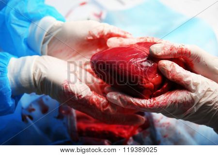 Doctor doing heart operation