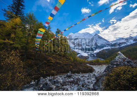 Mountain With Snow And Pine Forest And Tibet Prayer Flags