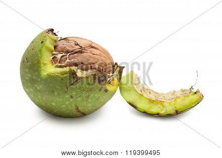 Green Walnut Peeled Away