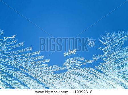 Winter Natural Painting