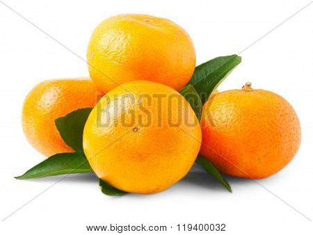 Four fresh mandarin oranges