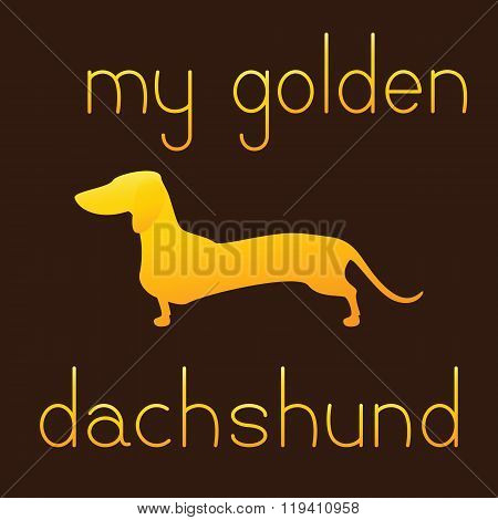 My Golden Dachshund