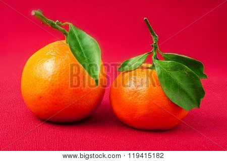 Mandarin Orange,  with green leaf, isolated on red background