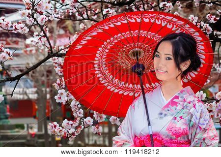 Young Japanese Woman with Sakura Trees in Spring