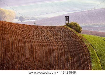 Arable Lands In Spring. Hunting Box In Moravia Hills