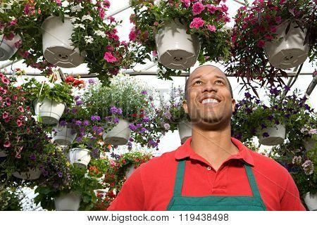 Shop assistant at a garden centre