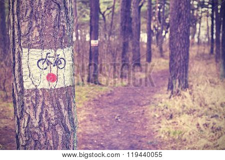 Vintage Toned Bike Trail Sign Painted On A Tree In Forest