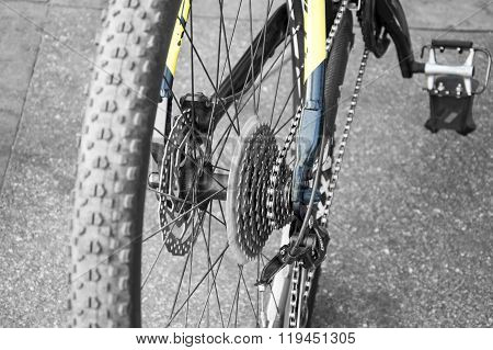 Cycle Chain System