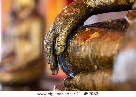 Hand of the Buddha.
