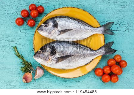 Raw Fresh Dorado Fish On Plate And Vegetables  On Blue Background. Top View.
