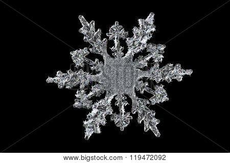 Decorative Snowflake Isolated