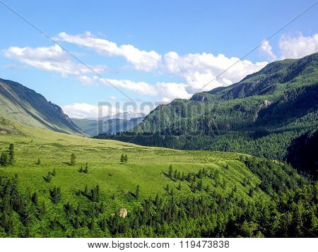 Landscape panorama view of field on mountain