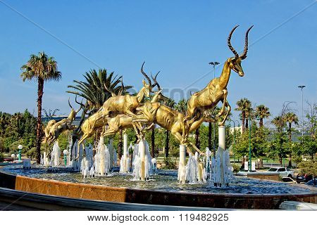 The Gold Antelopes