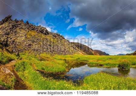 The picturesque valley in Landmannalaugar national park. Green grass among the thermal springs. Summer in Iceland