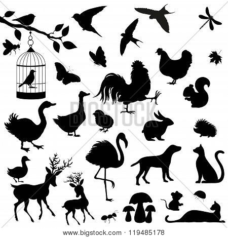 Cute Animals Silhouetes