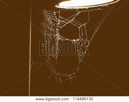 Retro Looking Spider Web