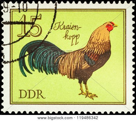 German Cock On Postage Stamp