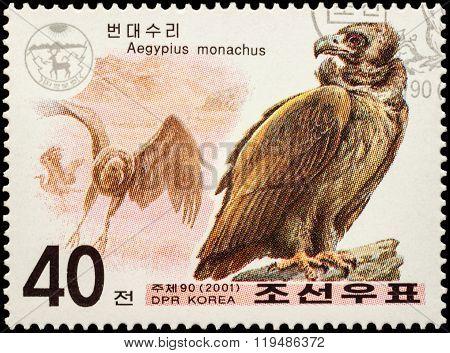 Cinereous Vulture (aegypius Monachus) On Postage Stamp