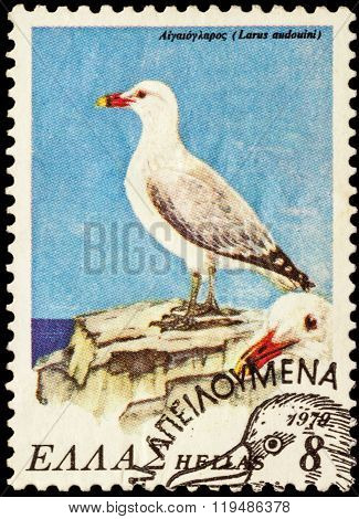Seagull (larus Audoinii) On Postage Stamp