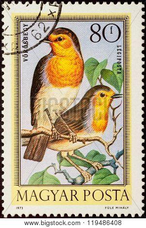 European Robin (erithacus Rubecula) On Postage Stamp