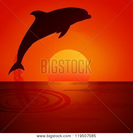 Dolphin at sunset. Vector illustration.