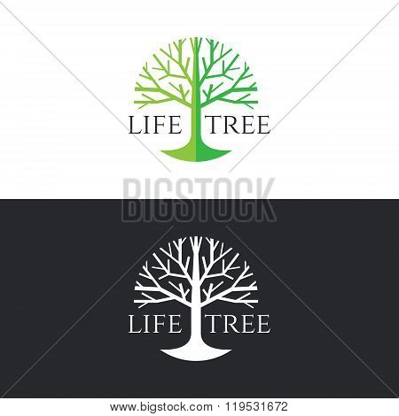 Life Tree Logo Circle Vector Design - Green Tree Tone On White Background And White Tree On Dark Gre