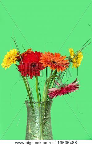 Gerberas In Vase On A Green Background
