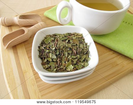 Bearberry leaves tea