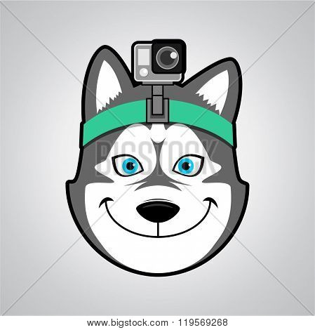 wolf mascot with camera