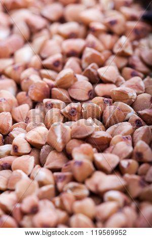 Dry Buckwheat Macro Texture