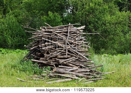 Pile branches on a meadow