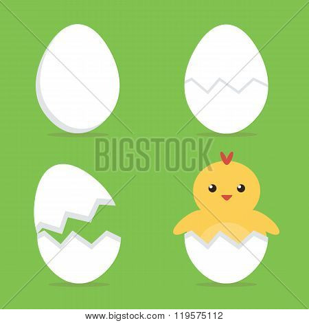 Baby chick hatching from the egg process. Flat design vector illustration.