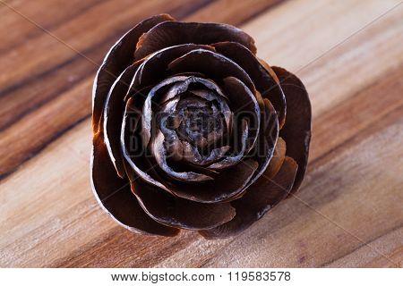 Pine Cone In  Rose Shape