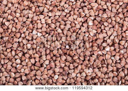Dry Buckwheat Macro Texture Background