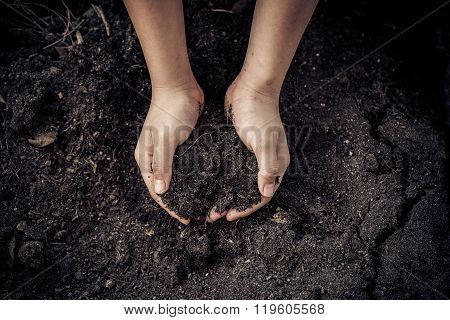 Black Soil In Hand
