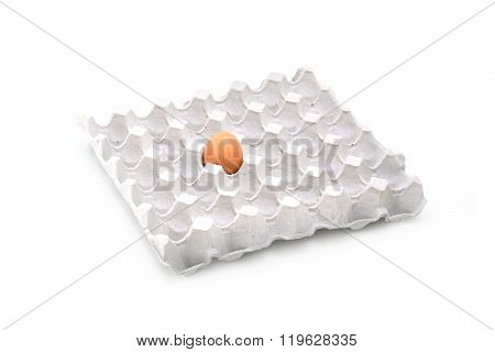 Only Egg In Paper Tray Isolate On White Background