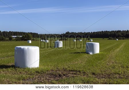 White plastic bale on a field.