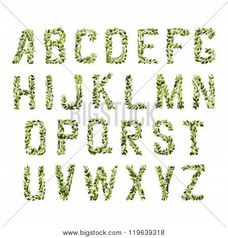 Foliage Decorative Green Font