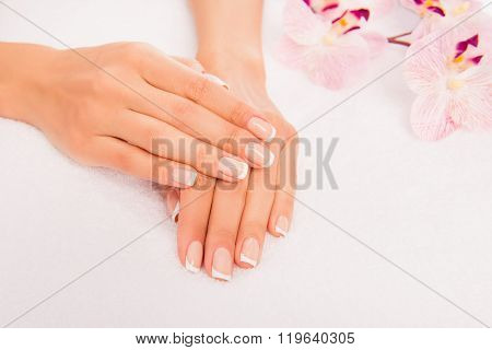 Close Up Photo Of Woman's Hand With Manicure And Flower Of Orchid