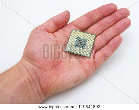Processor in hand
