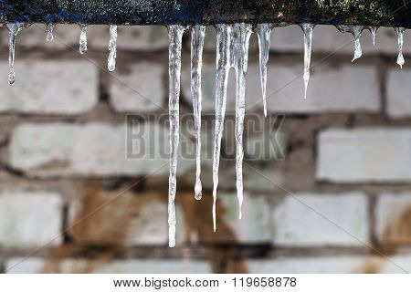 Icicles And Brick Wall On Background