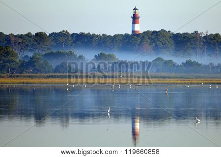 Chincoteague Island, Virginia, USA